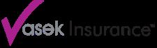 Vasek Logo